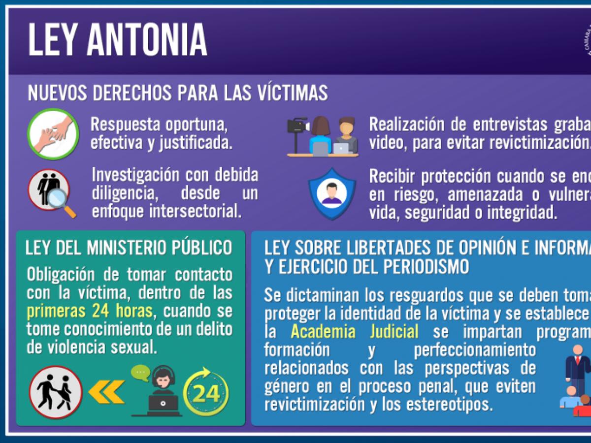 Despachan a segundo trámite proyecto que busca proteger a las víctimas de delitos sexuales