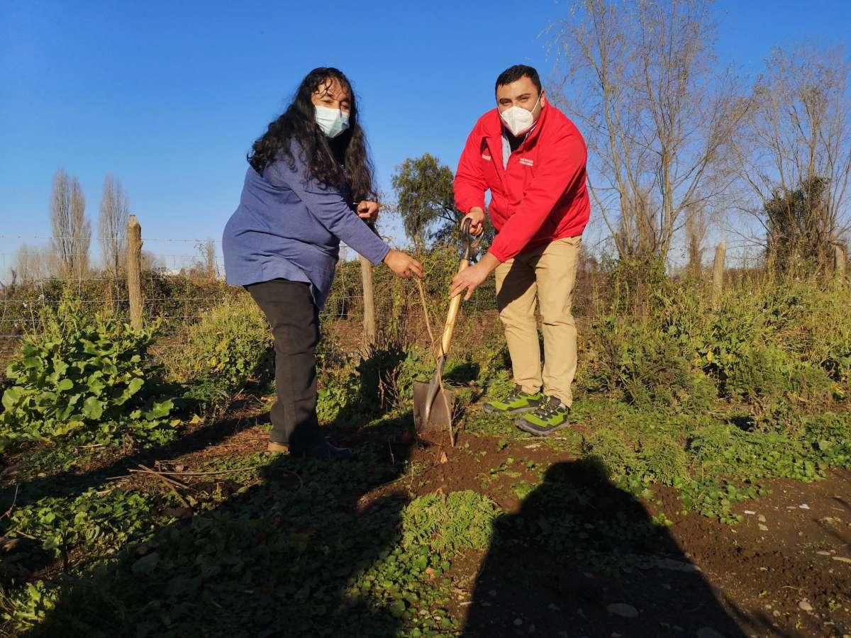 Seremi de Gobierno y CONAF impulsan programa de arborización en barrios de la región de Ñuble