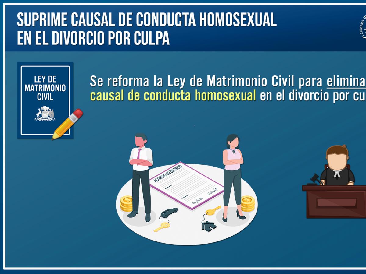A ley proyecto que elimina conducta homosexual como causal del divorcio por culpa