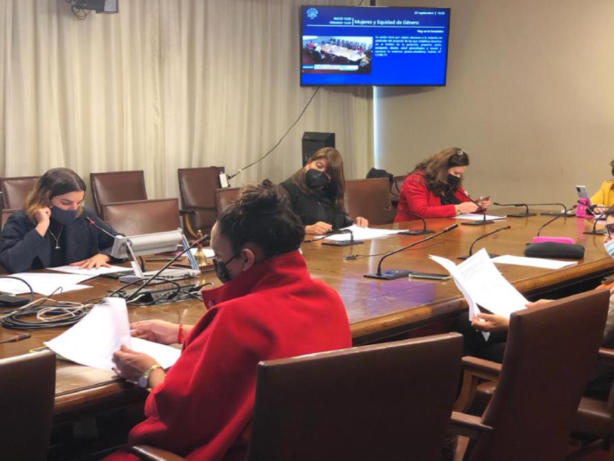 """""""Ley Adriana"""": Comisión despacha proyecto que termina con violencia gineco-obstétrica"""