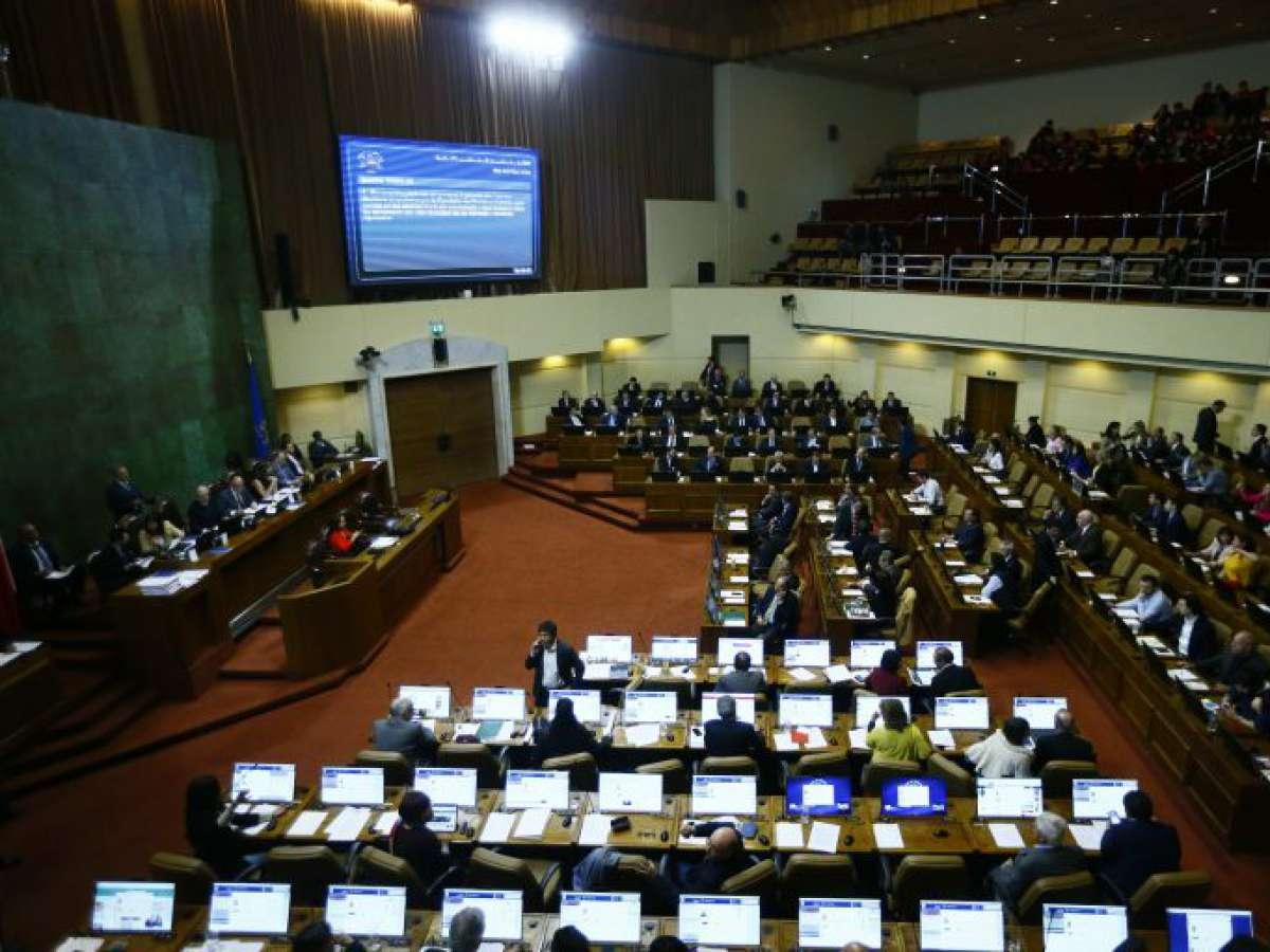 Cámara solicita medidas para enfrentar tala ilegal de bosques