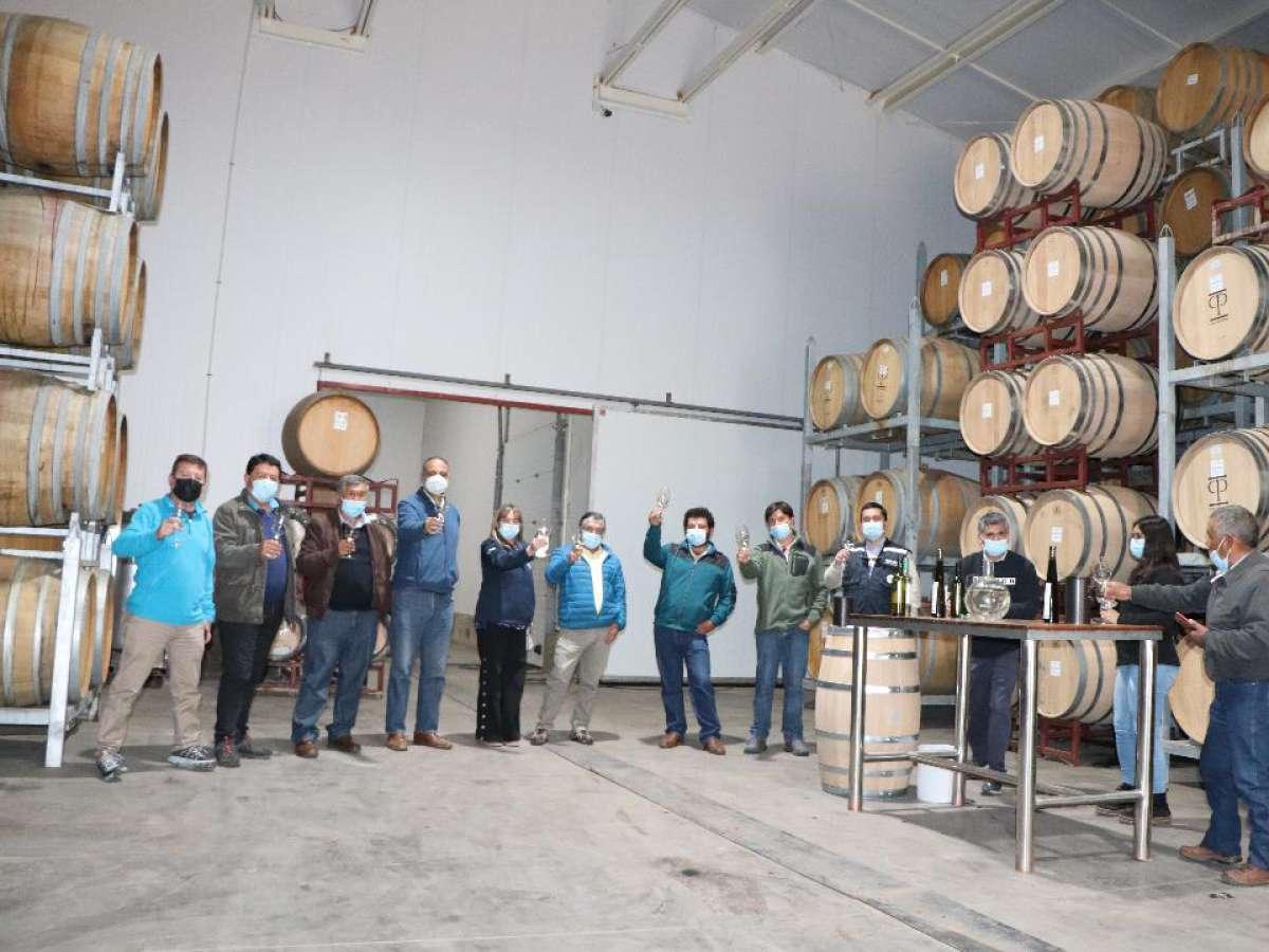 Primer vino Fair Trade de cepas ancestrales de Ñuble realizarán empresa campesina Moscin y Casas Patronales